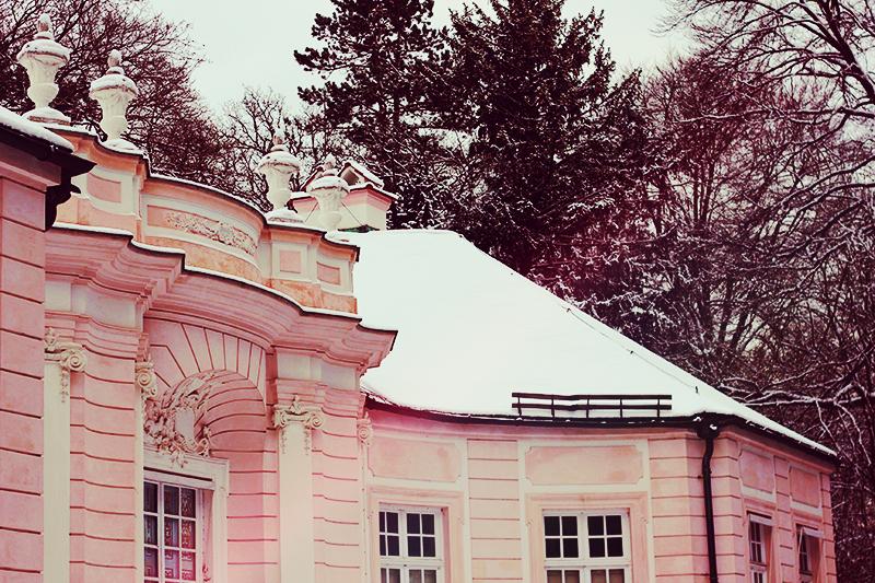 casa rosa munique