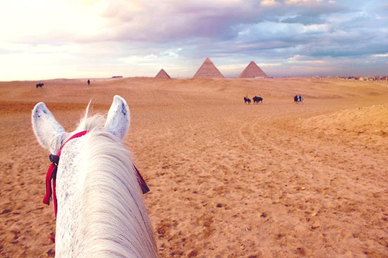 passeio de cavalo nas pirâmides, cairo, egito 2